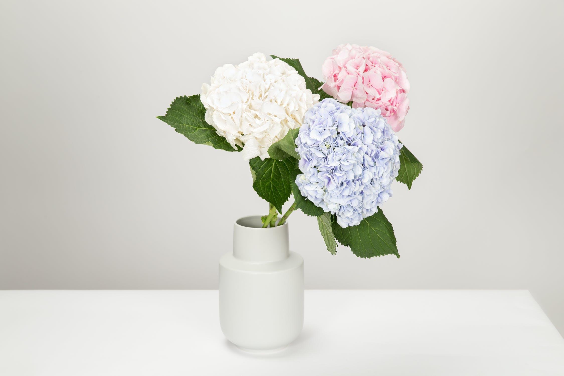 die passende vase