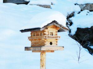 Verschneites Vogelhäuschen